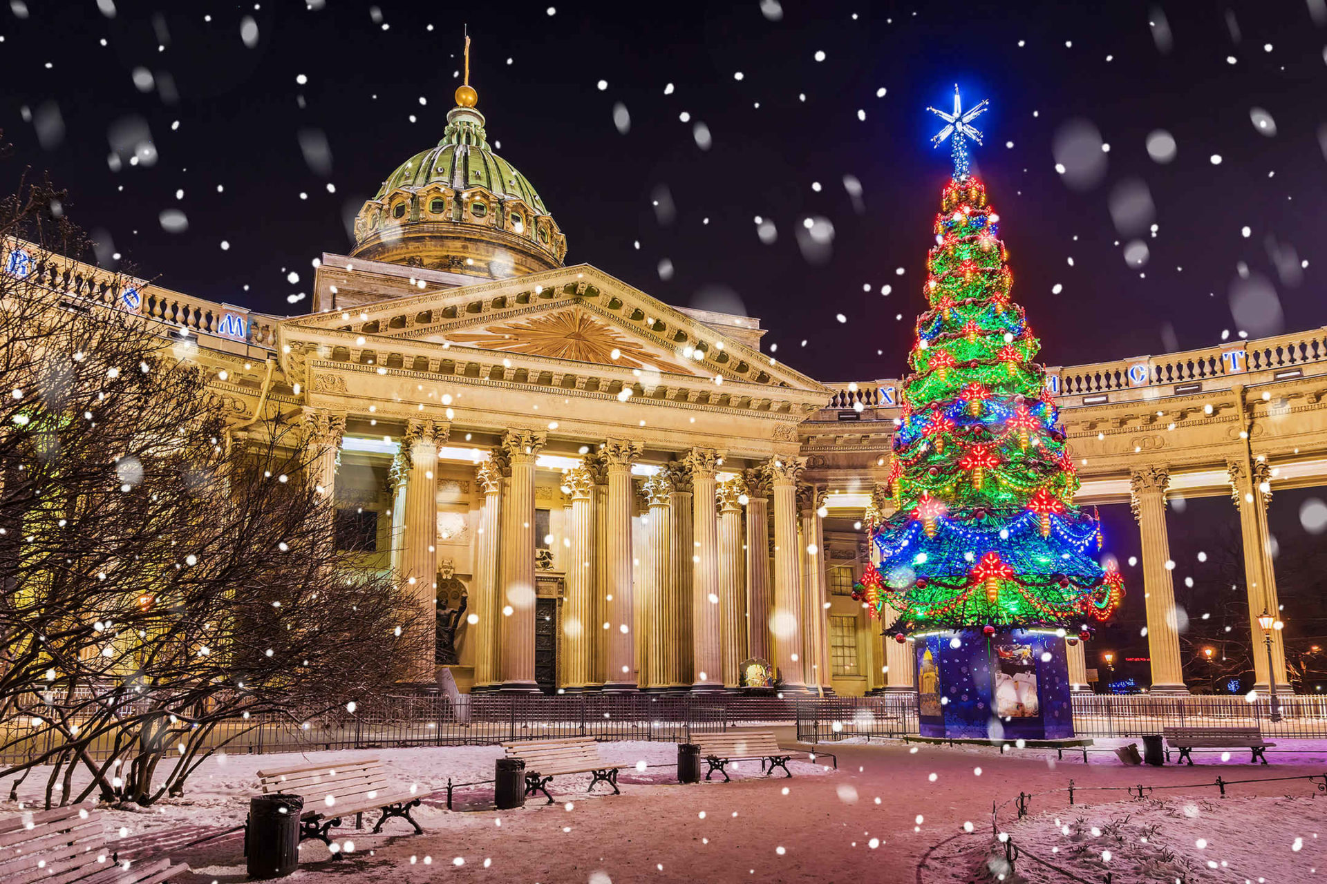 Christmas Trees Decorations HD Wallpapers   GoodTimes 1920x1280