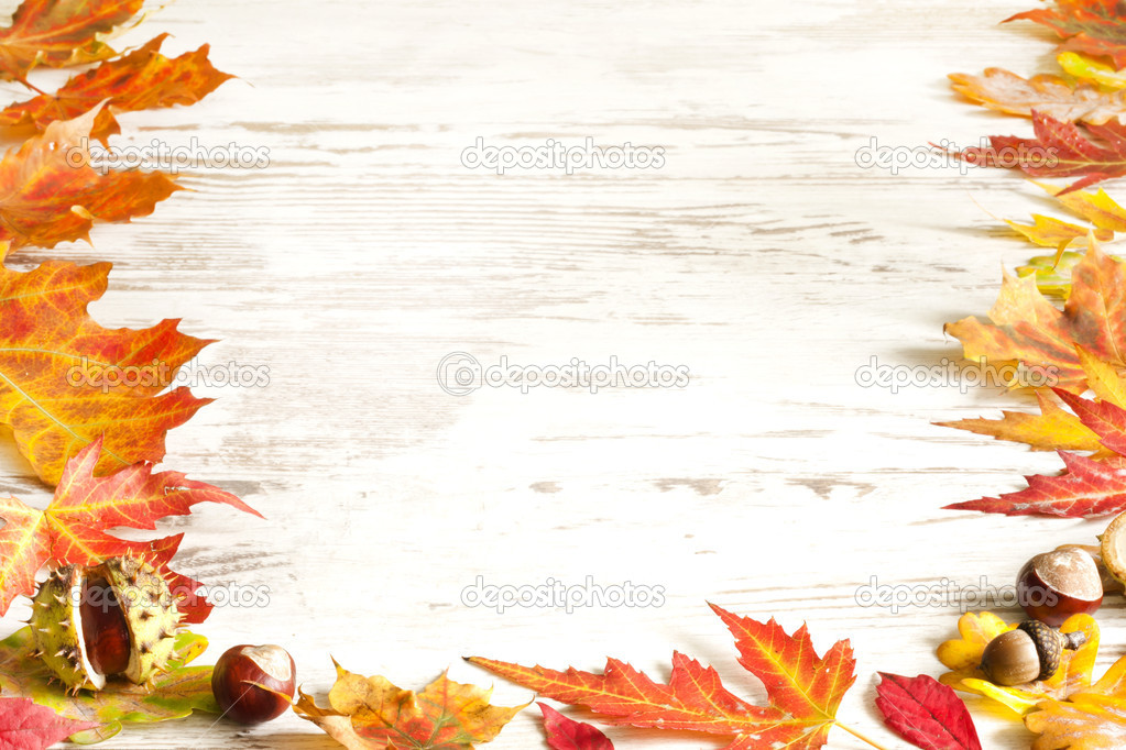 Autumn Leaves Wallpaper Border Autumn leaves on white boards 1023x682