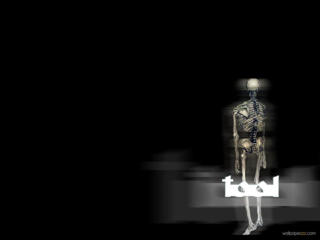 download x ray tool wallpaper download x ray tool wallpaper 1024x768