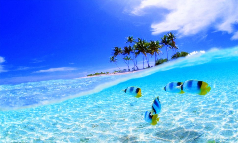 clear ocean water wallpaper clear wallpapers wallpapersafari 825