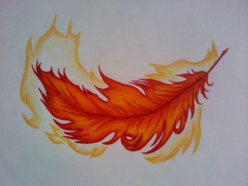 Phoenix feather wallpaper 1024x768 10851 1024x768