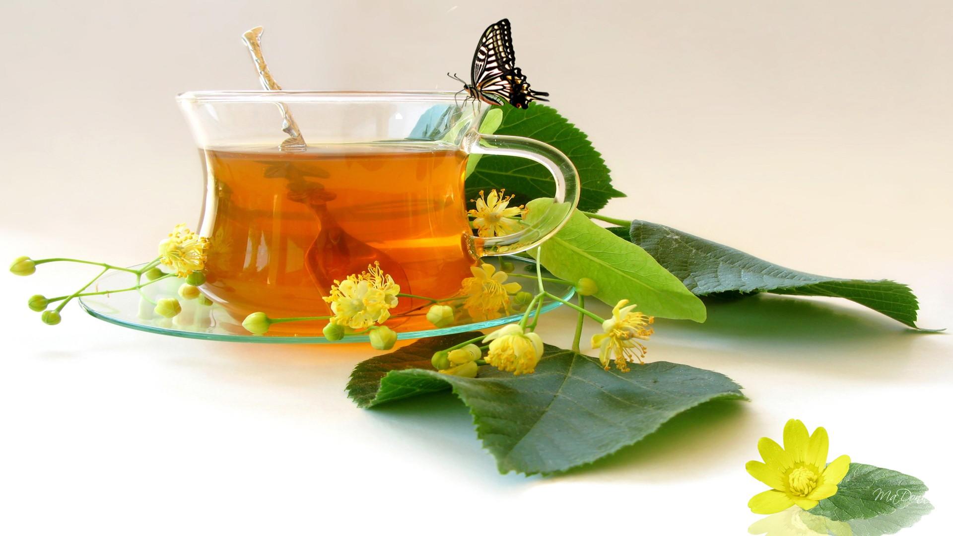 Cup of Tea wallpaper   ForWallpapercom 1920x1080