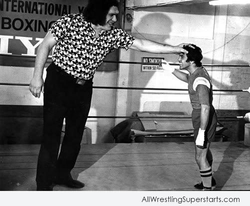 Andre The Giant With Fan   WWE Superstars WWE Wallpapers 500x411