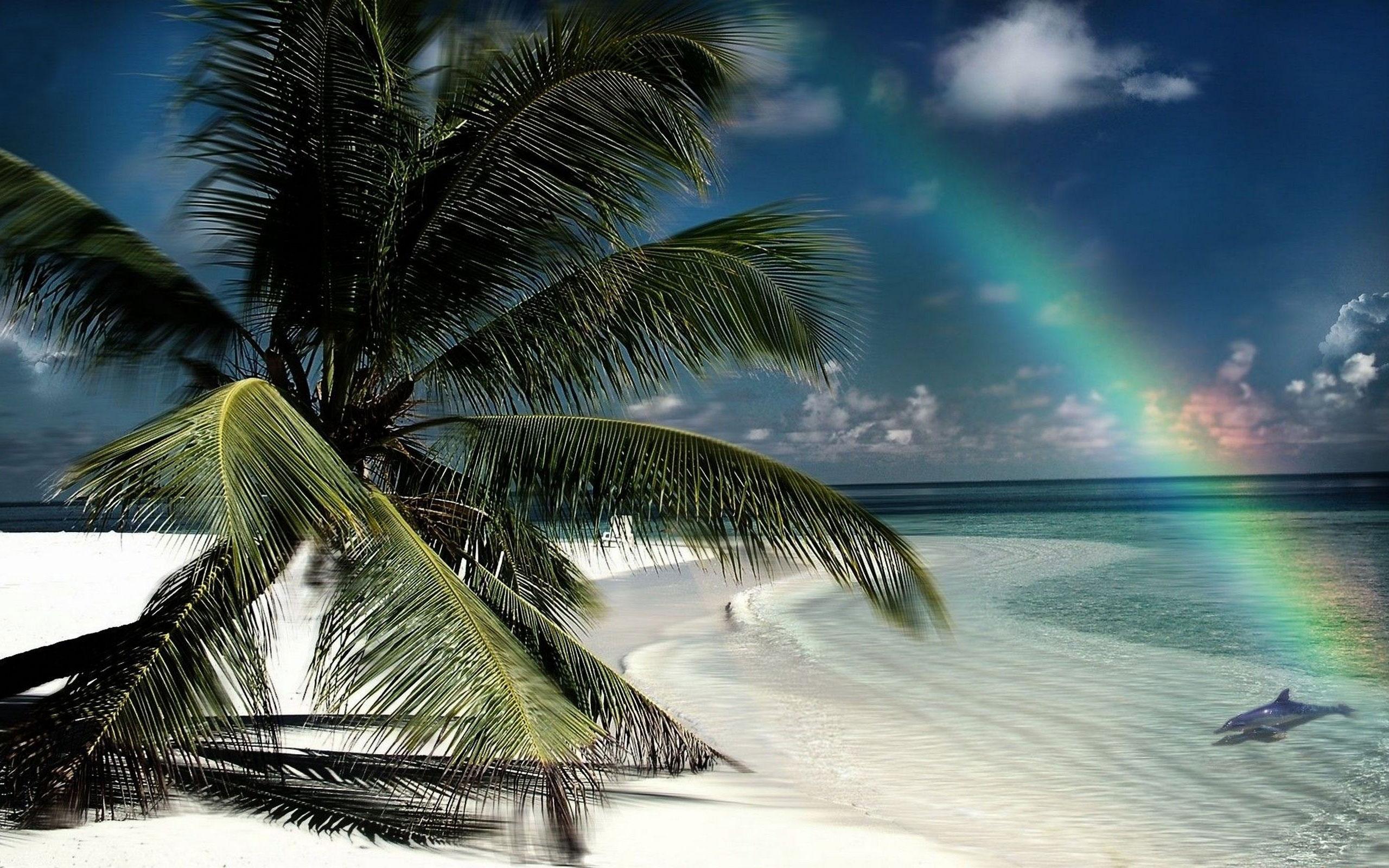 High Resolution Beach Scene Wallpaper 2560x1600