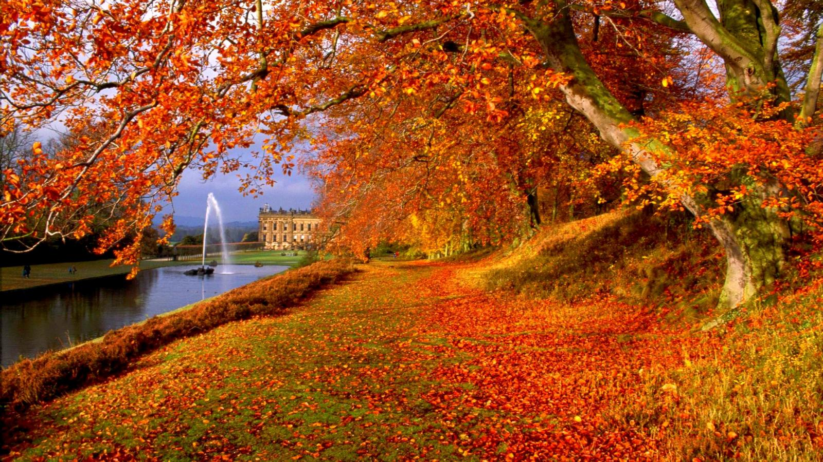 Latest Top HD Autumn Wallpapers HDIMAGESPLUS 1600x900