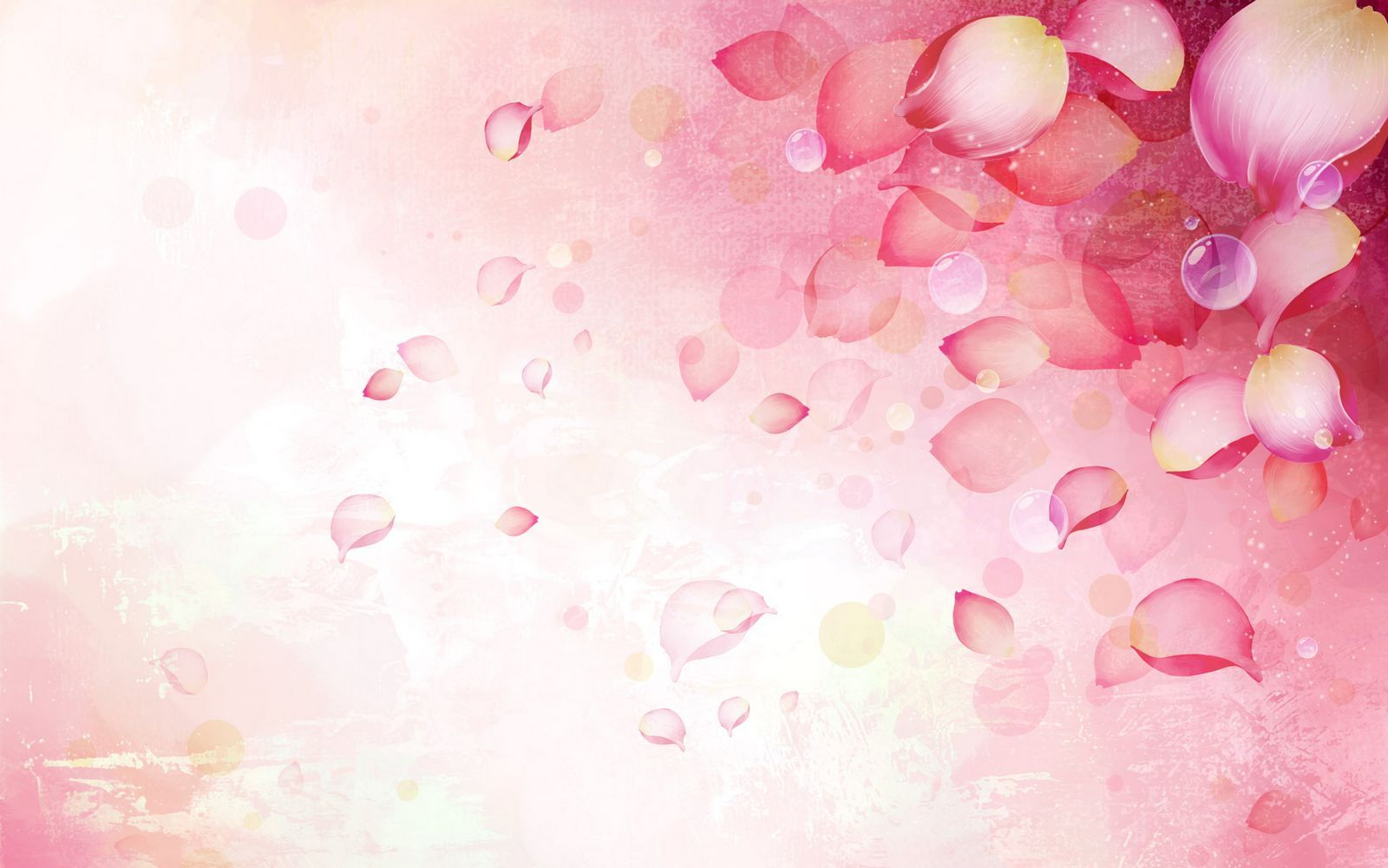 Beautifully Illustrated Vector Flower Backgrounds 1600x1000