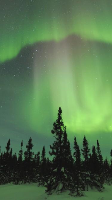 Aurora Borealis Manitoba Canada 375x667   Wallpaper   ImgPrix 375x667