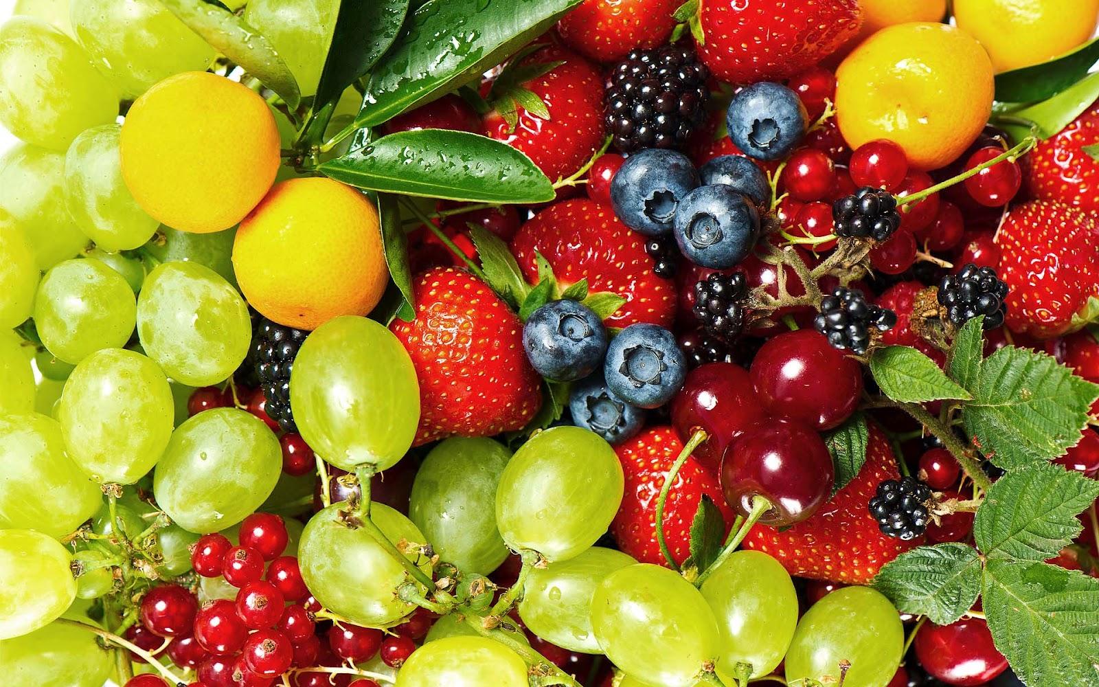 Met Veel Verschillende Soorten Fruit HD Wallpaper Foto 1600x1000