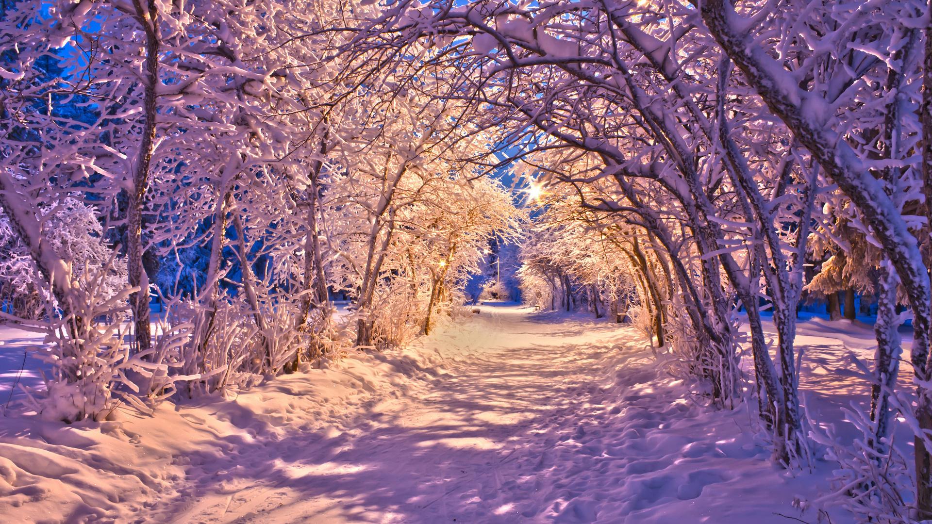 Winter Snow Christmas Sidewalk Roads Lights White Trees Wallpaper 1920x1080