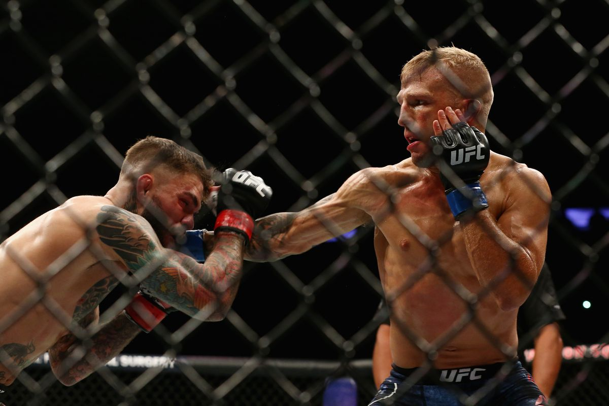 UFC 217 video highlights TJ Dillashaw survives knockdown TKOs 1200x800