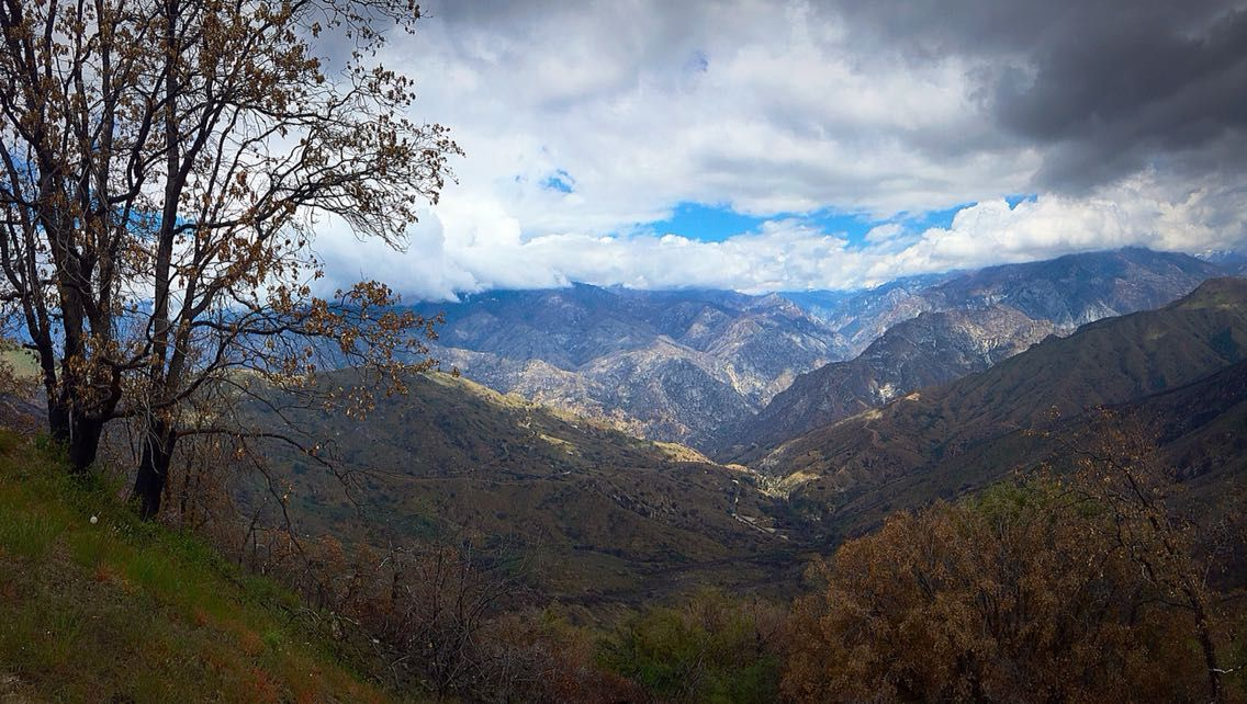 Kings Canyon National Park California 1469x2600 landscape Nature 1136x642