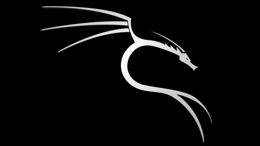 black dragons wallpaper dragon white and black dragons black and white 900x506