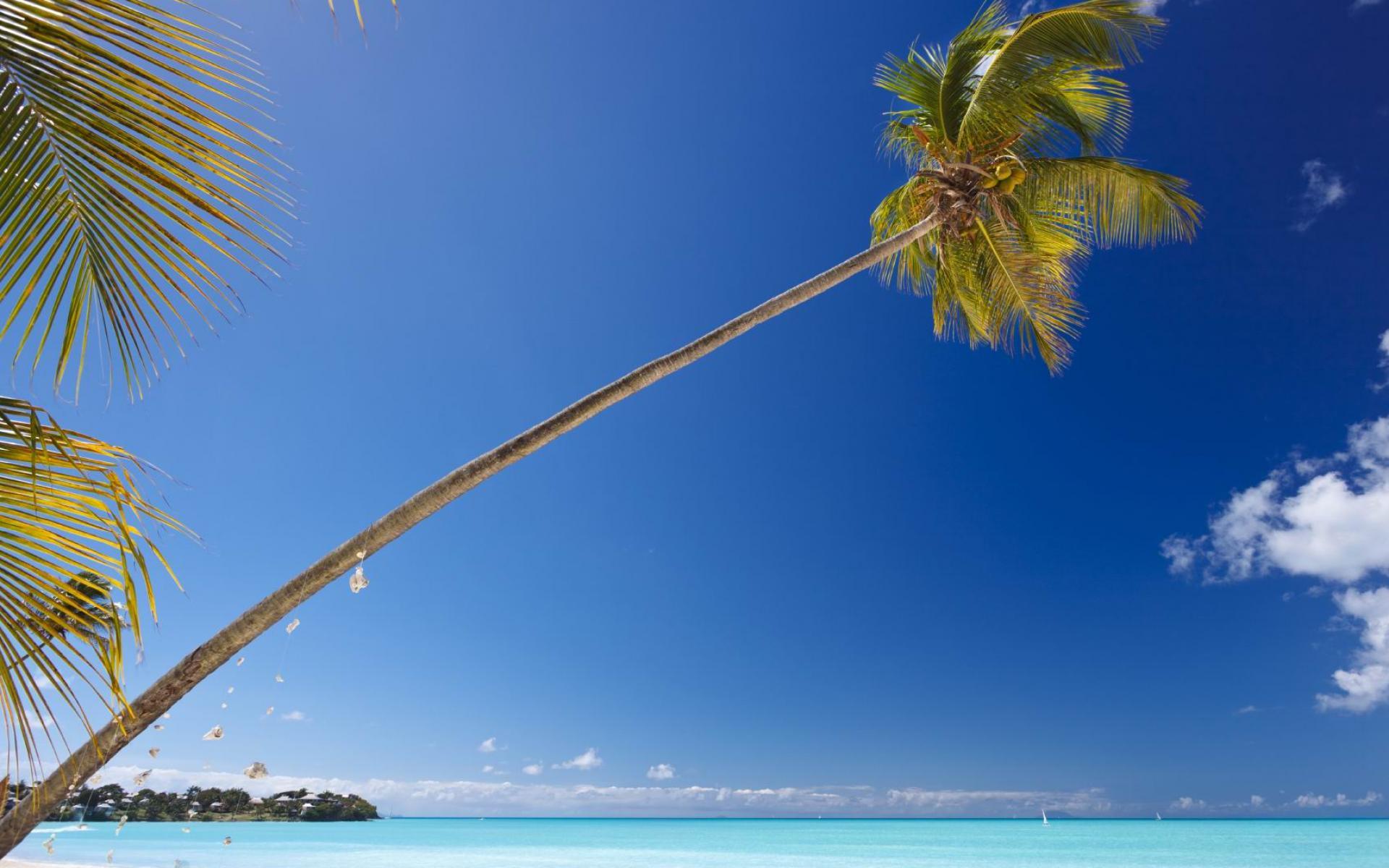 Caribbean Tropical Beach Full HD Desktop Wallpapers 1080p 1920x1200