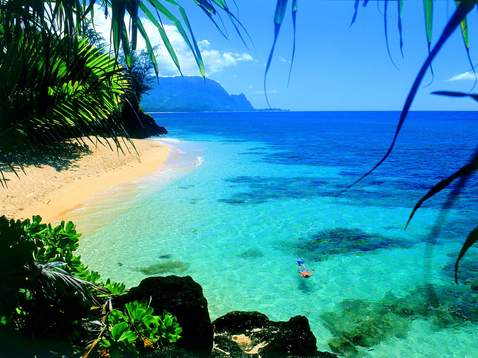 download hawaii beaches wallpaper which is under the beach wallpapers 1600x1200