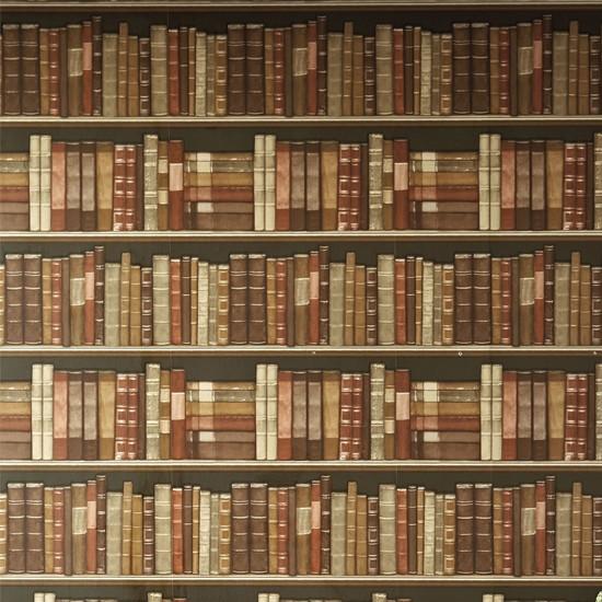 Bookshelves wallpaper from Next Next autumnwinter 2012 trends   10 550x550