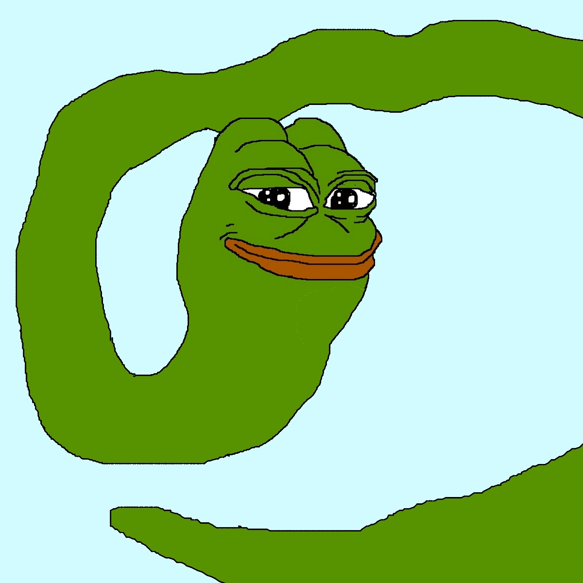 Pepe Frog Meme for Pinterest 1200x1200