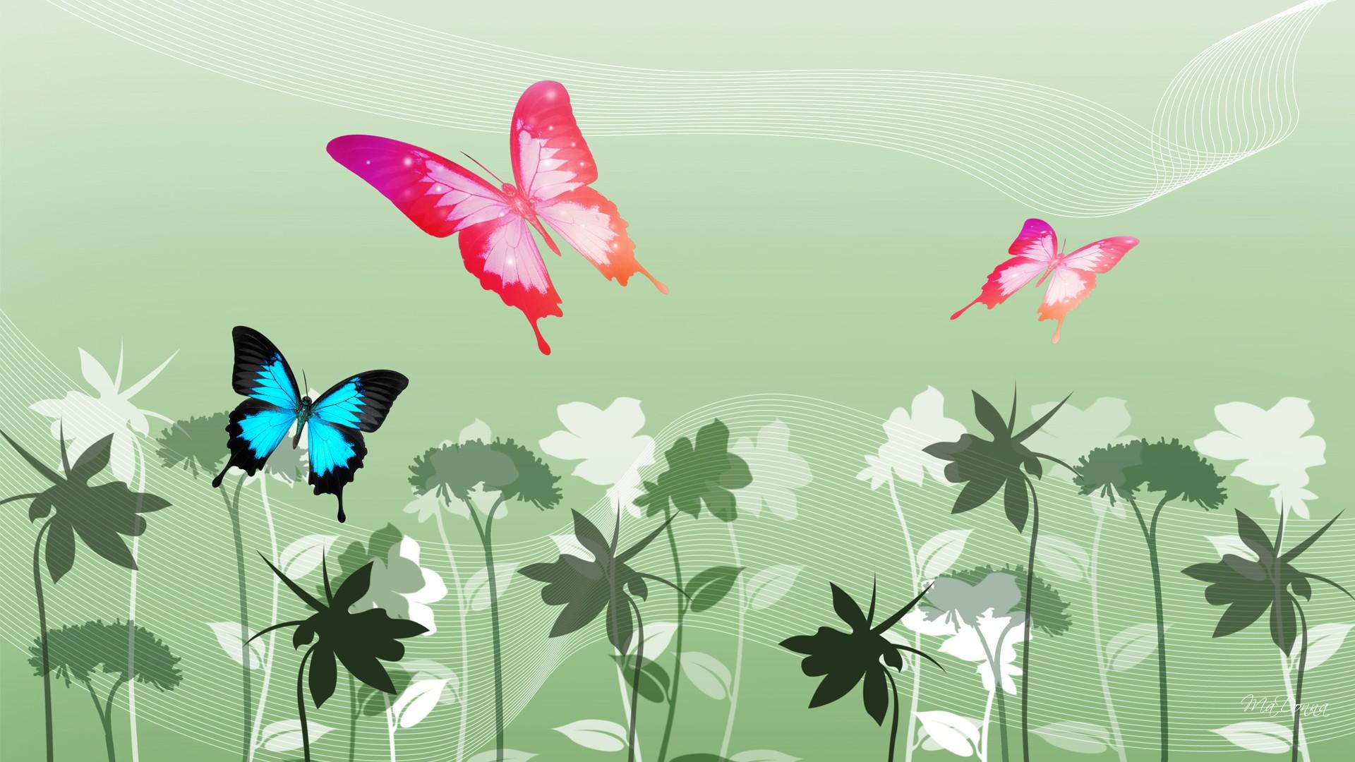 Colorful Butterfly Wallpapers 27 Background Wallpaper   Hivewallpaper 1920x1080