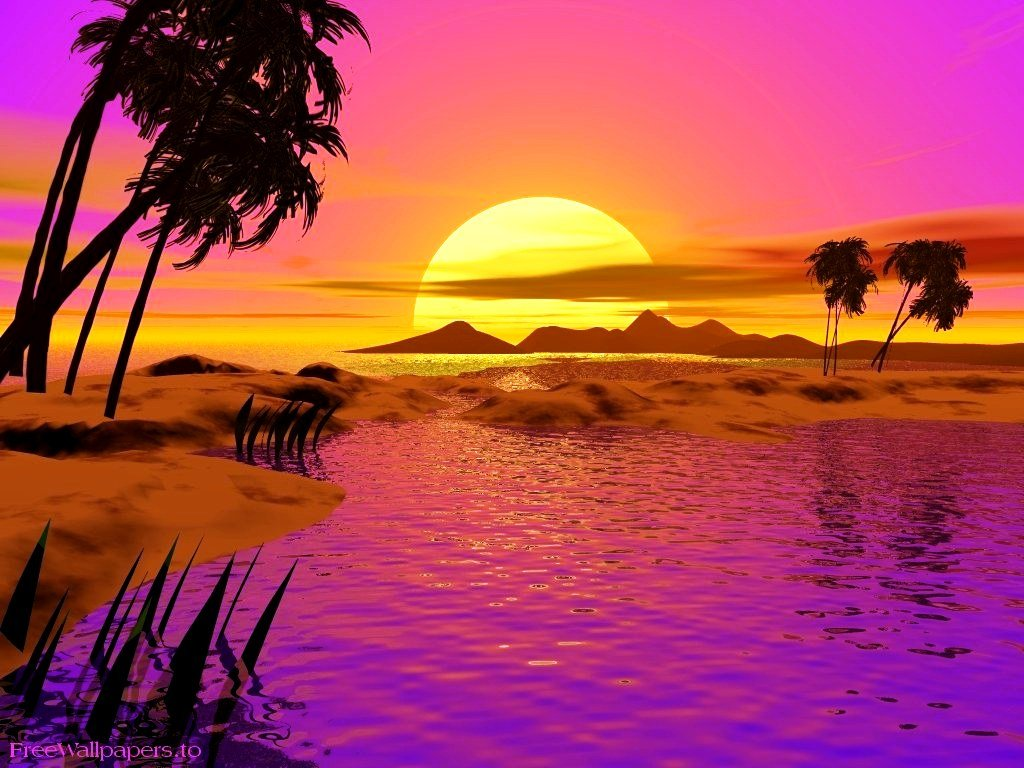 Animated Desktop Backgrounds For Xp Sunset Beachjpg 1024x768