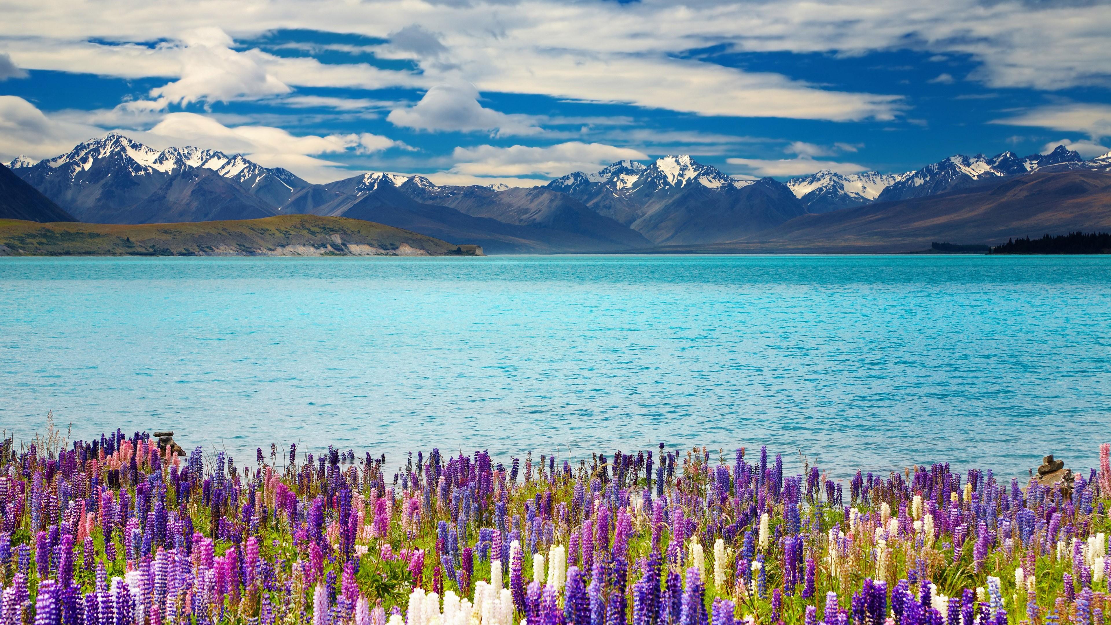 Beautiful Spring Scenery Lake HD Wallpaper   New HD Wallpapers 3840x2160