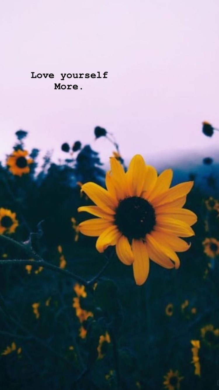 Pretty Aesthetic Wallpapers   Top Pretty Aesthetic 750x1334