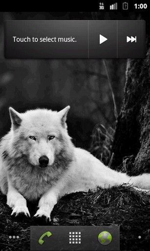 Wolves HQ Live Wallpaper App para Android 307x512