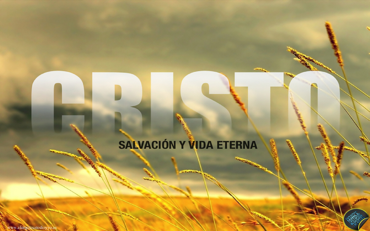 Wallpapers Cristianos Gratis Pictures 1204x752