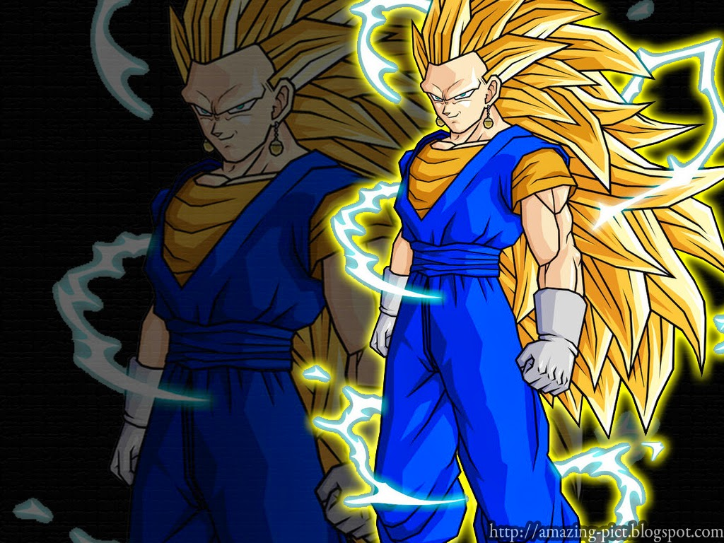 Goku Super Saiyan 3 Wallpaper Imgkidcom The Image 1024x768