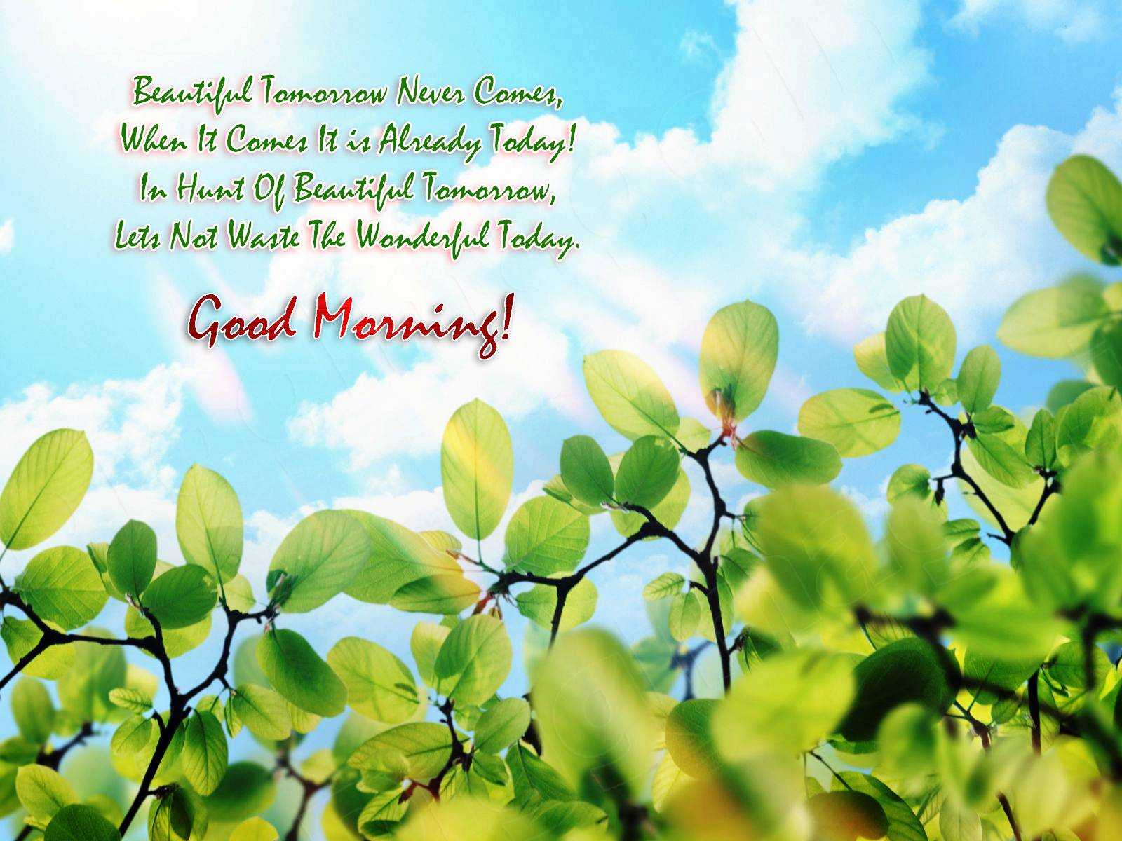 Good Morning Pictures Images SMS And Quotes New 1600x1200