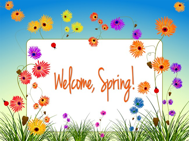 Happy First Day Of Spring Pictures Photos And Images For 650x488