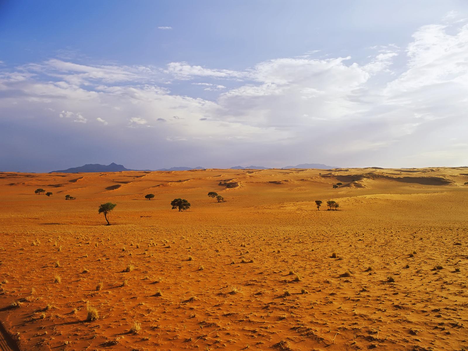 desert landscape wallpaper - photo #34