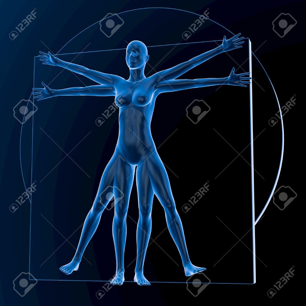 Leonardo Da Vinci Vitruvian Woman Translucent Blue On Dark 1300x1300