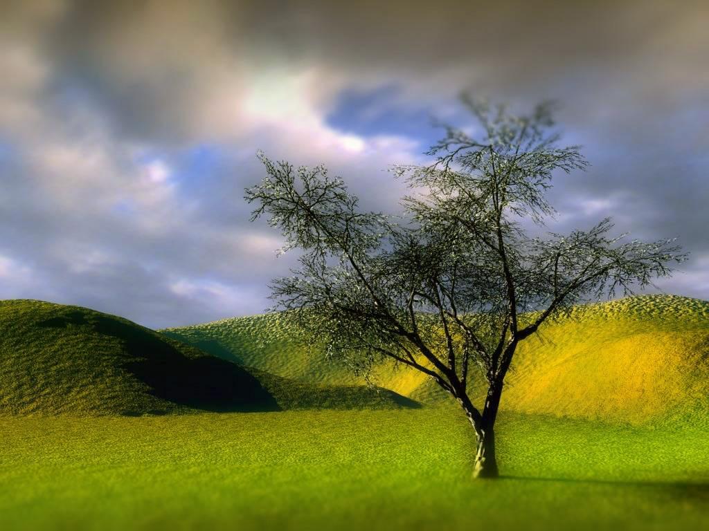 Santa Banta Nature Wallpapers Desktop Backgrounds 1024x768