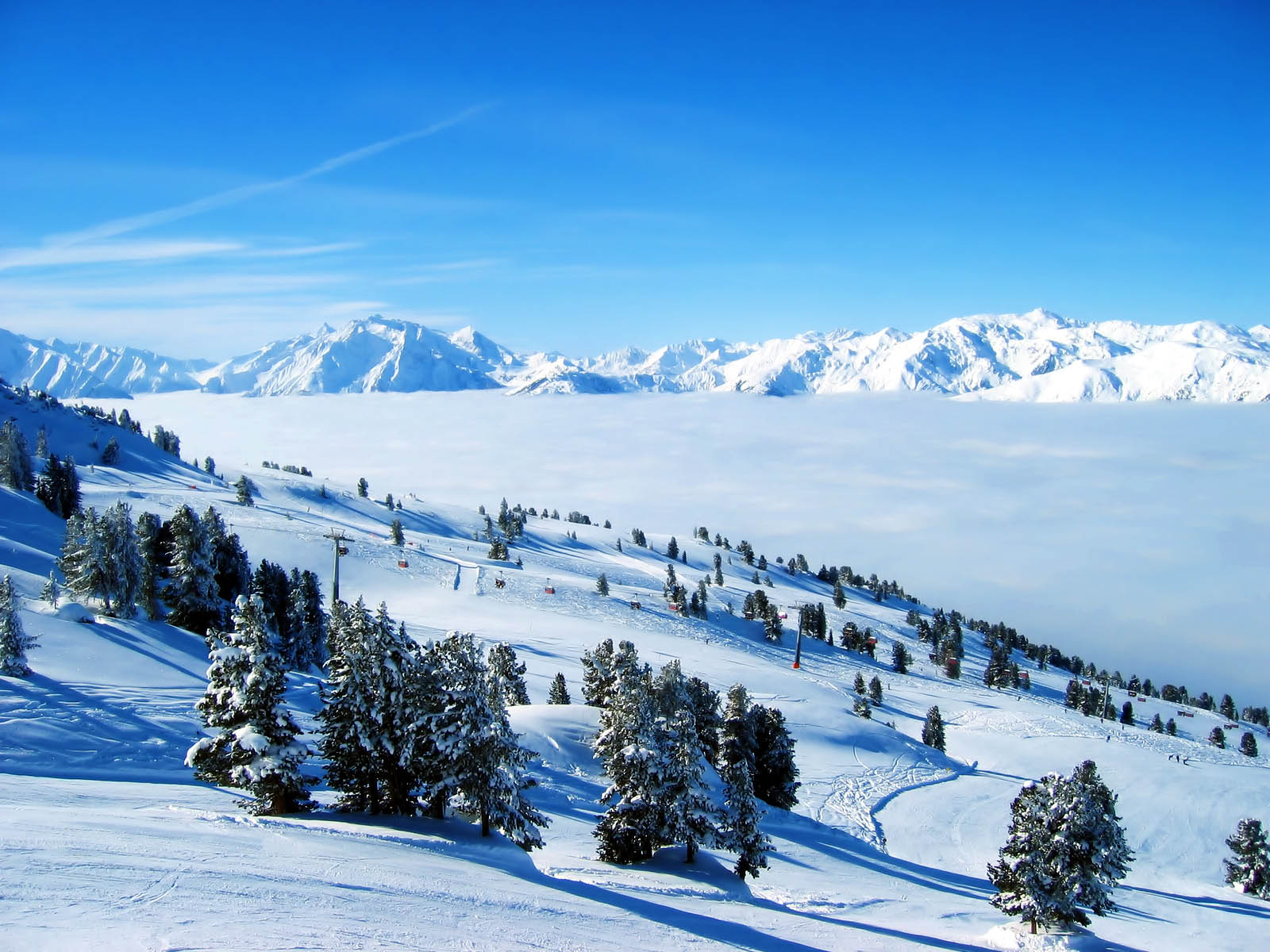 Tag Winter Backgrounds Wallpapers Photos Picturesand Images for 1600x1200