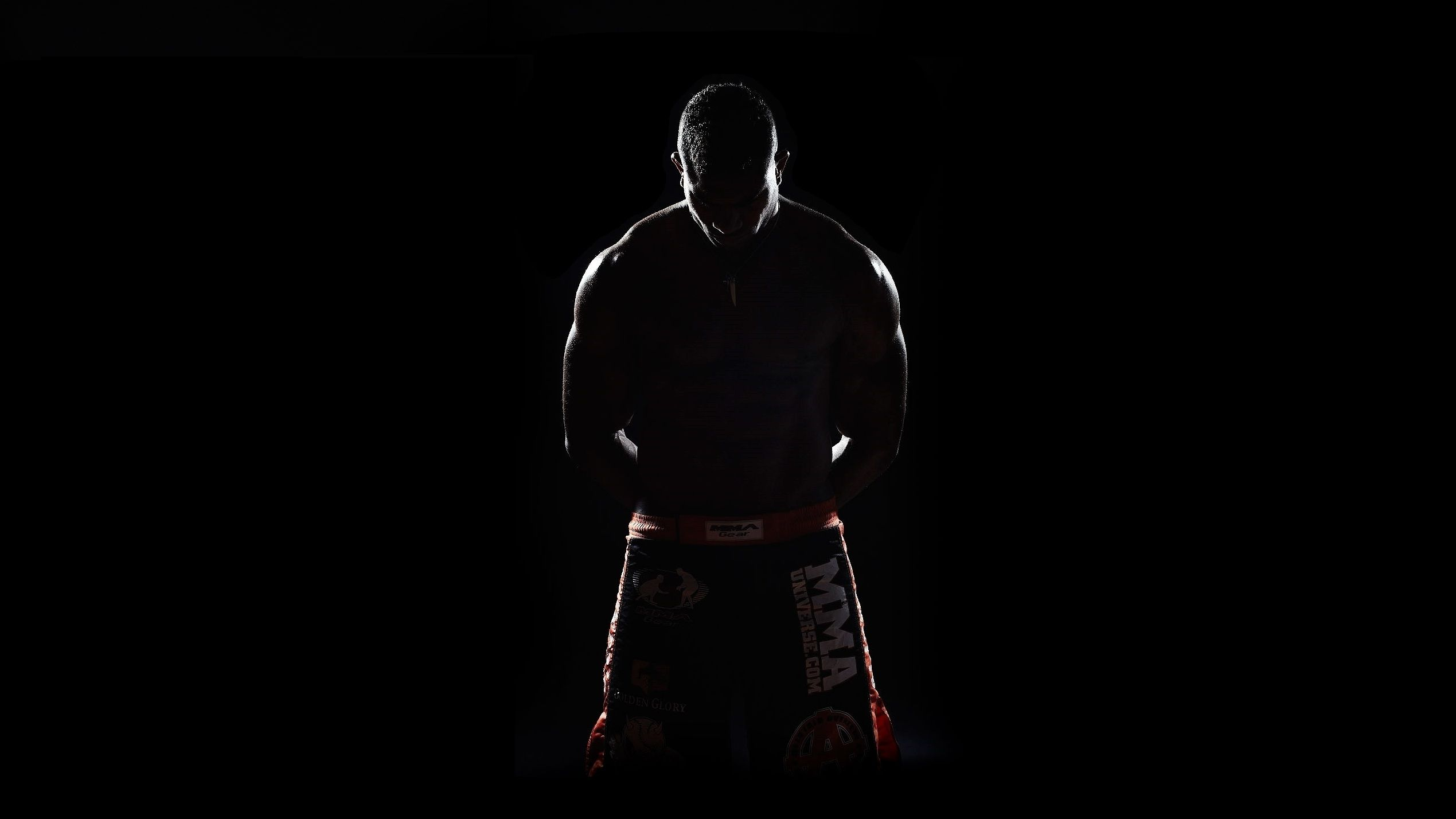 MMA Wallpapers 2539x1428