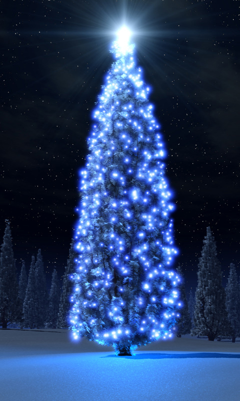 Blue Christmas Tree Pocket Pc Wallpapers 480x800 Hd Wallpaper For Your 480x800