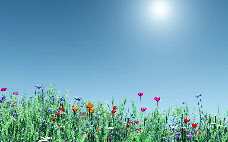 1440x900 Spring Flowers desktop PC and Mac wallpaper 1440x900