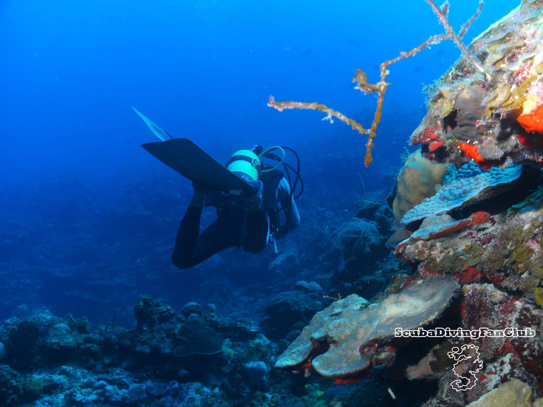 cliff diving wallpaper hd cliff diving wallpaper hd 1500x1125
