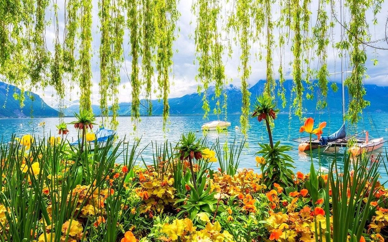 Spring Spring Lake Desktop Backgrounds 930897   HD Wallpaper 1280x800