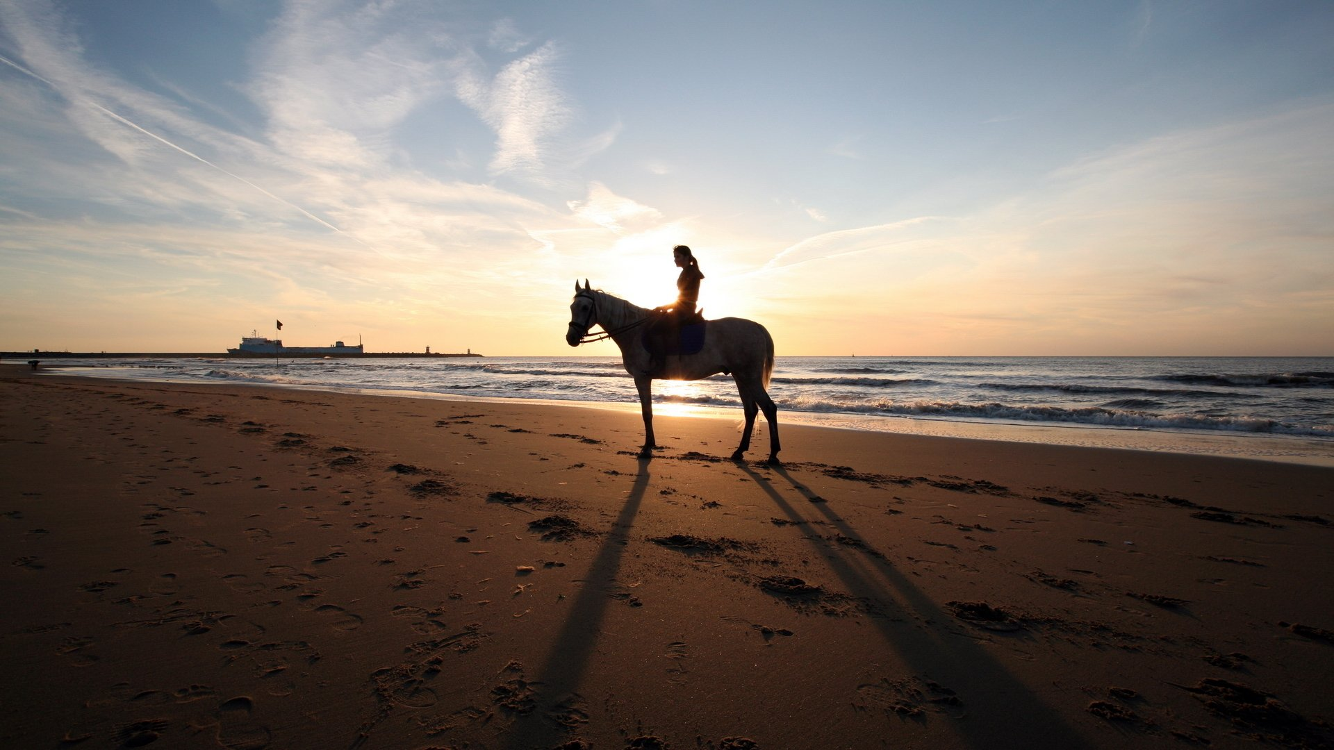 13 Horse Riding HD Wallpapers Background Images 1920x1080