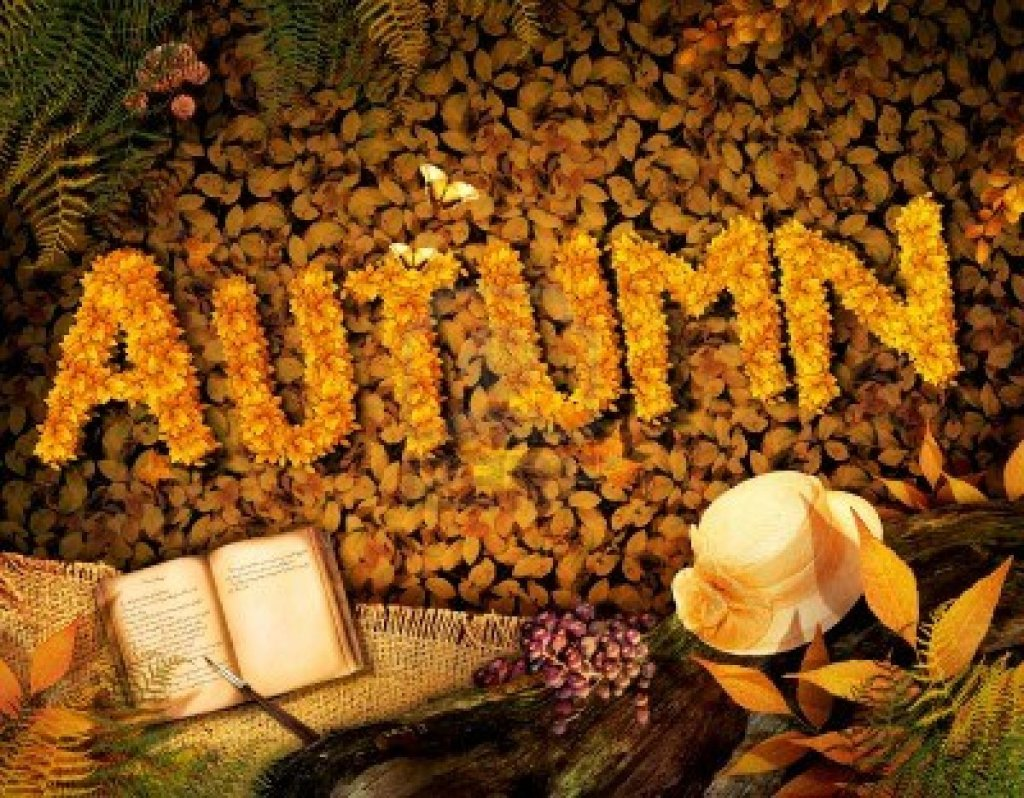 First Day of Autumn 2014 Wellcome Autumn Season Happy Holidays 2014 1024x798