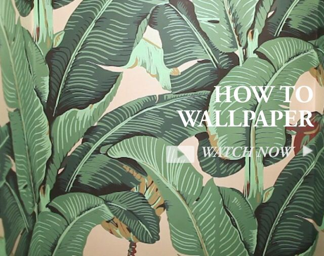 DIY How To Wallpaper Featuring The Iconic Beverly Hills Hotel 640x506
