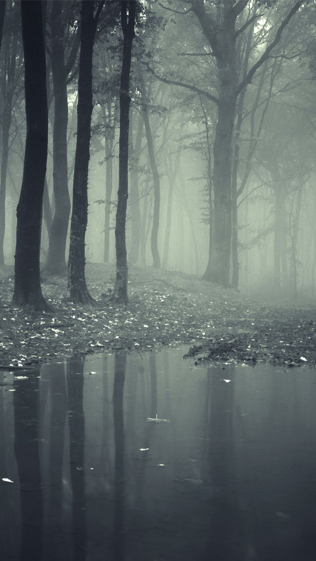 Creepy forest wallpaper wallpapersafari - Scary wallpaper iphone ...