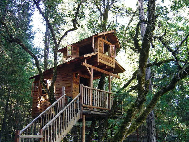 Free Download Forest Porch Treehouse Architecture Other Hd