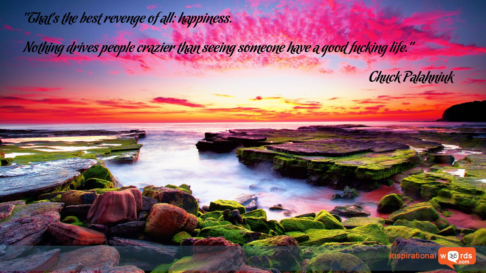 Inspirational Wallpaper Quote by Chuck Palahniuk Thats the best 1920x1080
