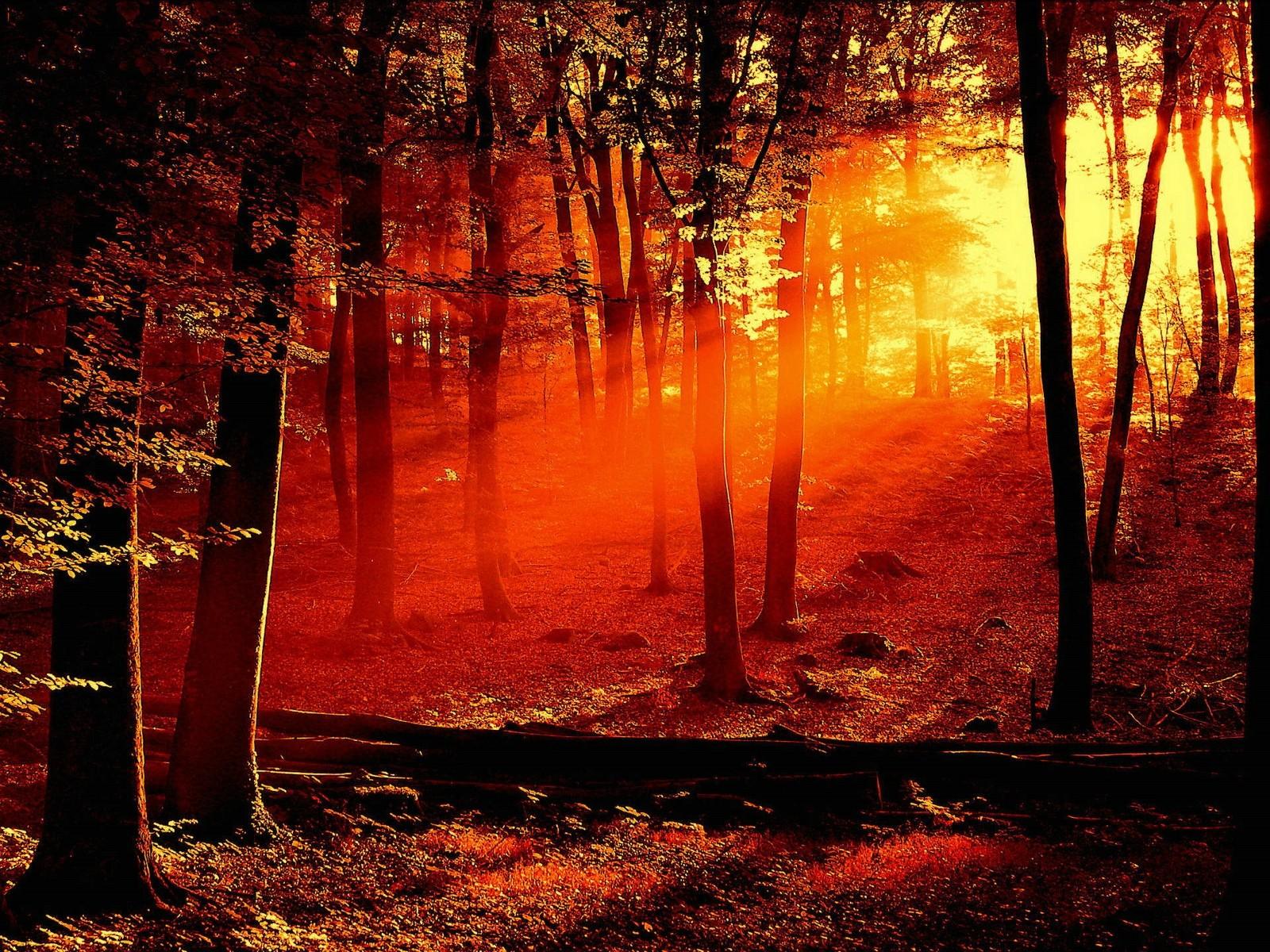 Desktop Wallpaper Sunset 1600x1200