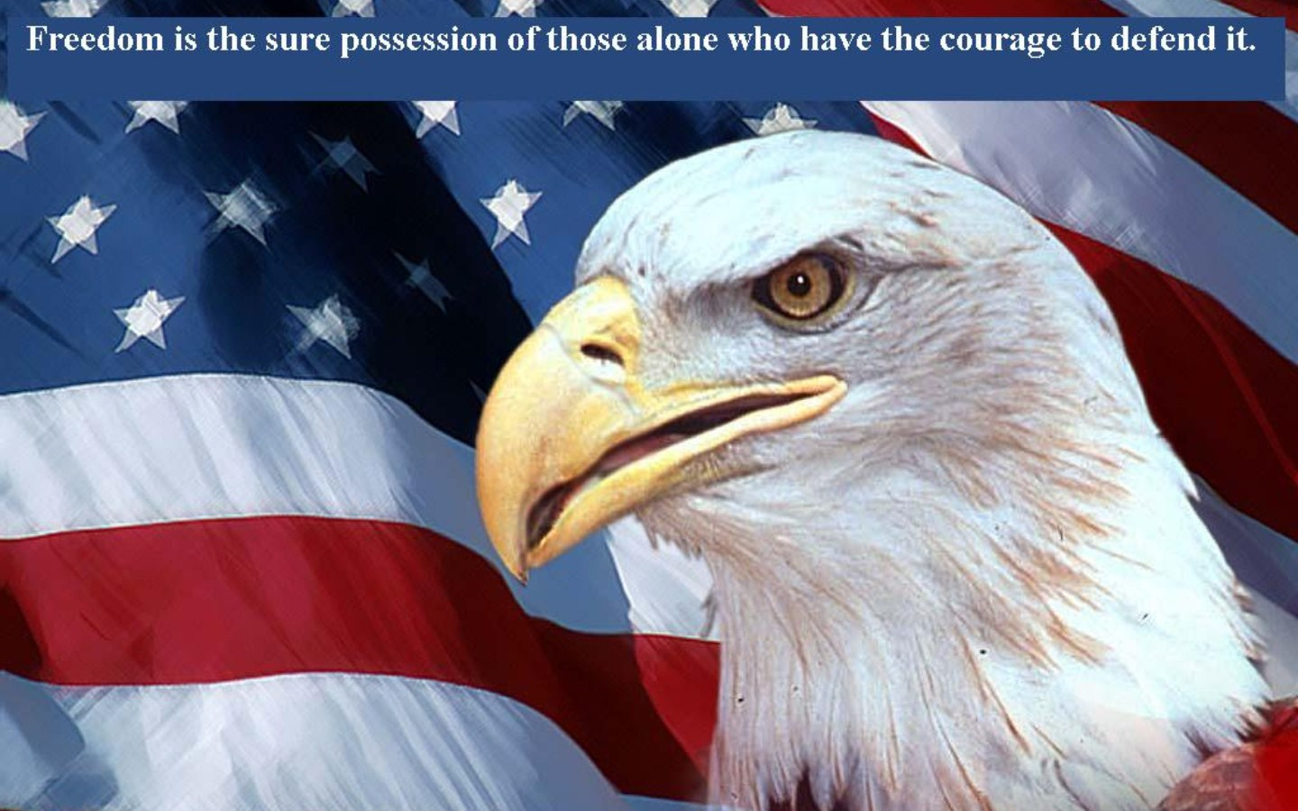 wallpaper Courage Bald Eagle and American Flag 1440x900
