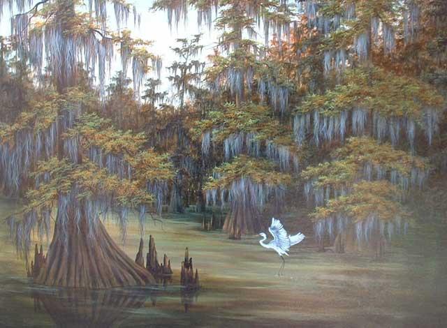 Louisiana Swamp Scene Wallpaper Wallpapersafari