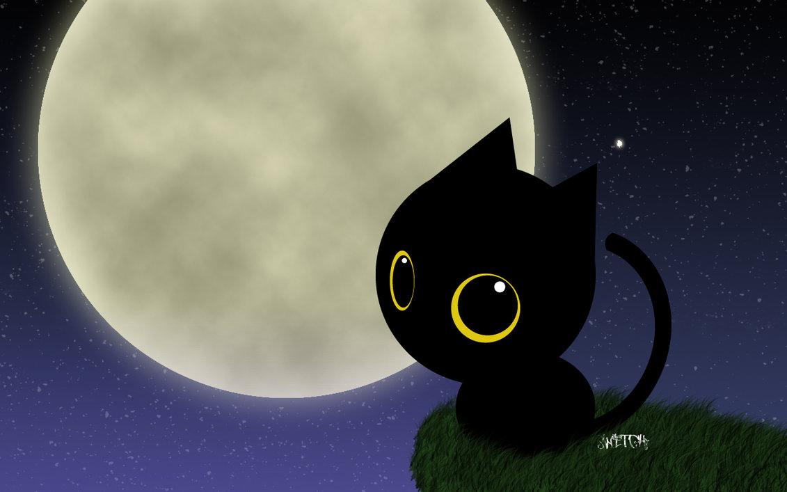 black cat halloween wallpaper