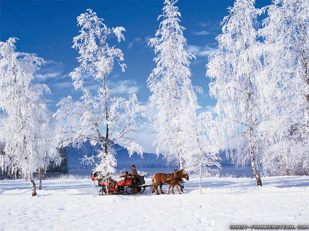 winter wallpaper PixelsTalk Winter Scenes for Desktop 1024x768