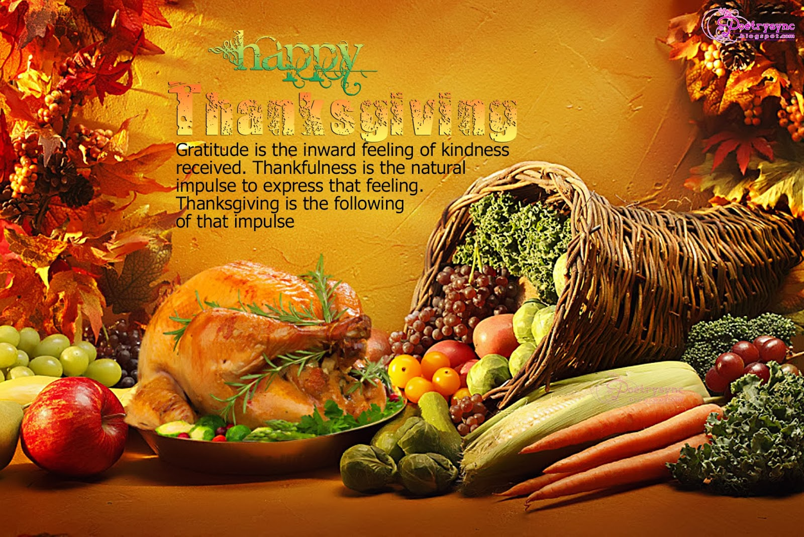 Thanksgiving Day Pictures 34 Thanksgiving Day Pictures 1600x1069